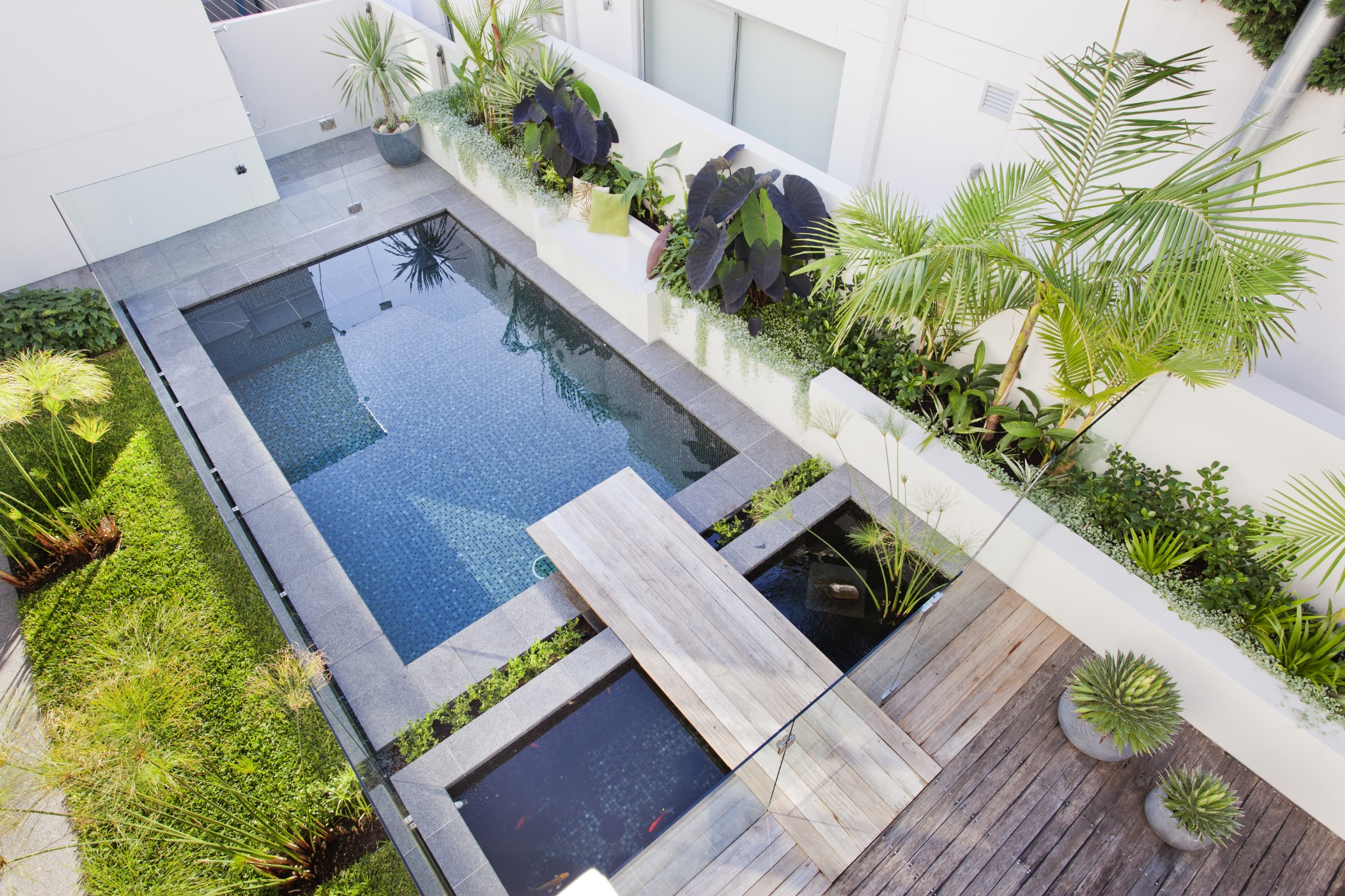 A small private pool with wooden deck in South Coogee