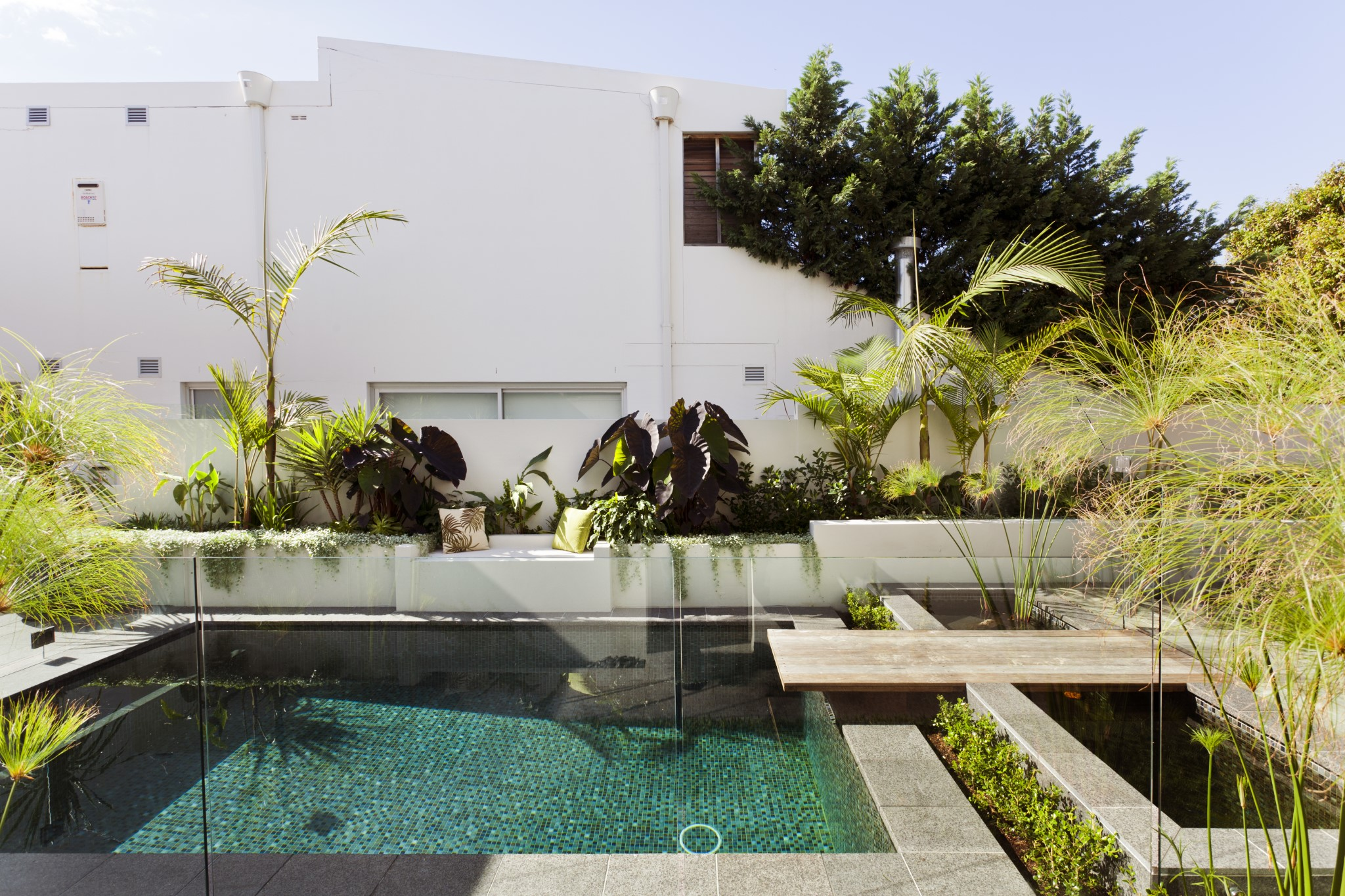 Classic design swimming pool with modern outlook surrounded by plants